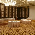 ホテル パーティールーム・会議室 壁面 | 東洋ホテル